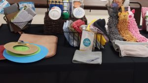 Clean with Kay and Norwex products